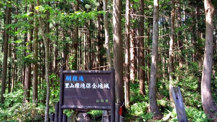 胴腹滝(遊佐町)