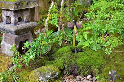 【特集記事】やまがたに息づく茶の文化 こだわりを極めた茶室「宝紅庵」に迫る