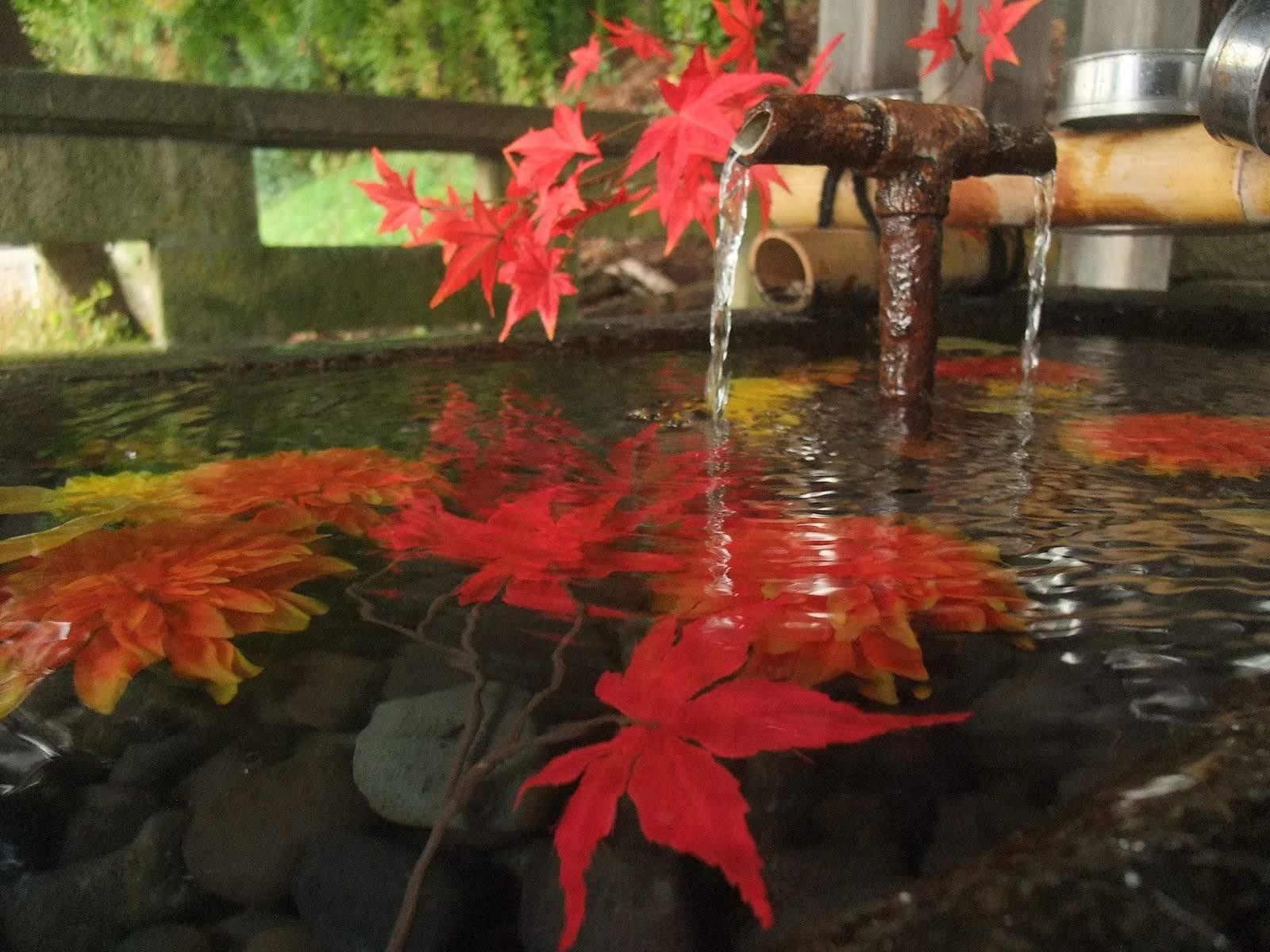 【まとめ】山形市周辺の週末イベント情報 11月2日(土),3日(日),4日(月)