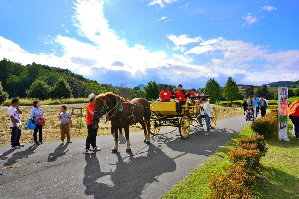 【特集記事】日本一たのしいやまがた馬まつり