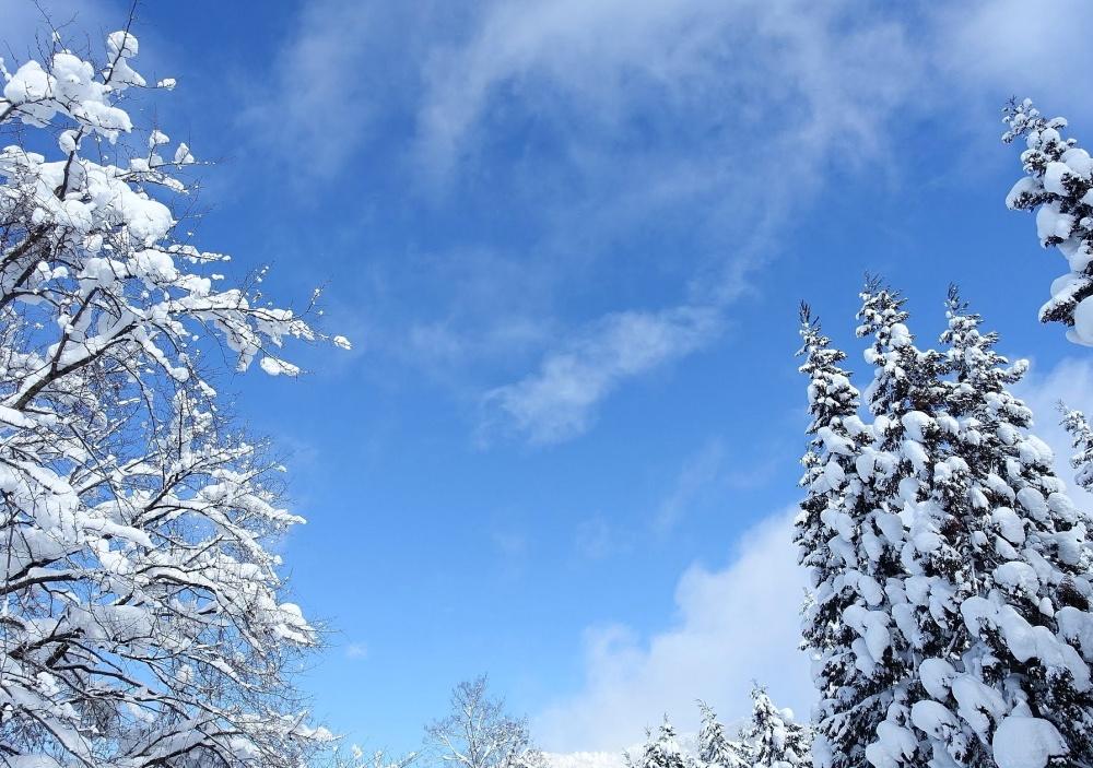 【まとめ】山形市周辺の週末イベント情報 1月10日(金)~1月13日(月)