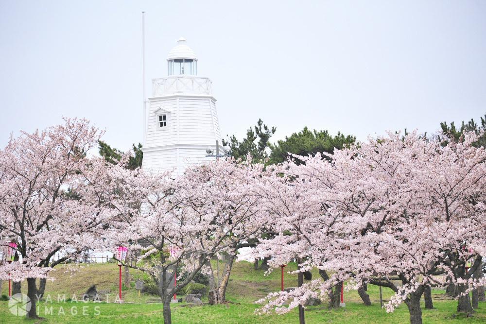 日和山公園 (酒田市)