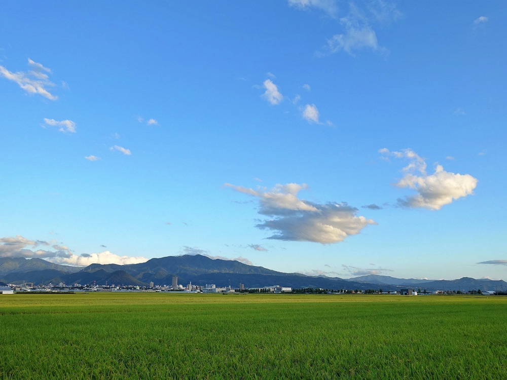 Scenery of the countryside