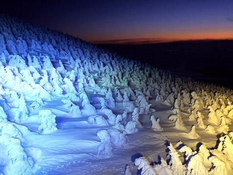 「GoTo!樹氷夜号」上山からライトアップされた山形蔵王の樹氷を見に行こう!