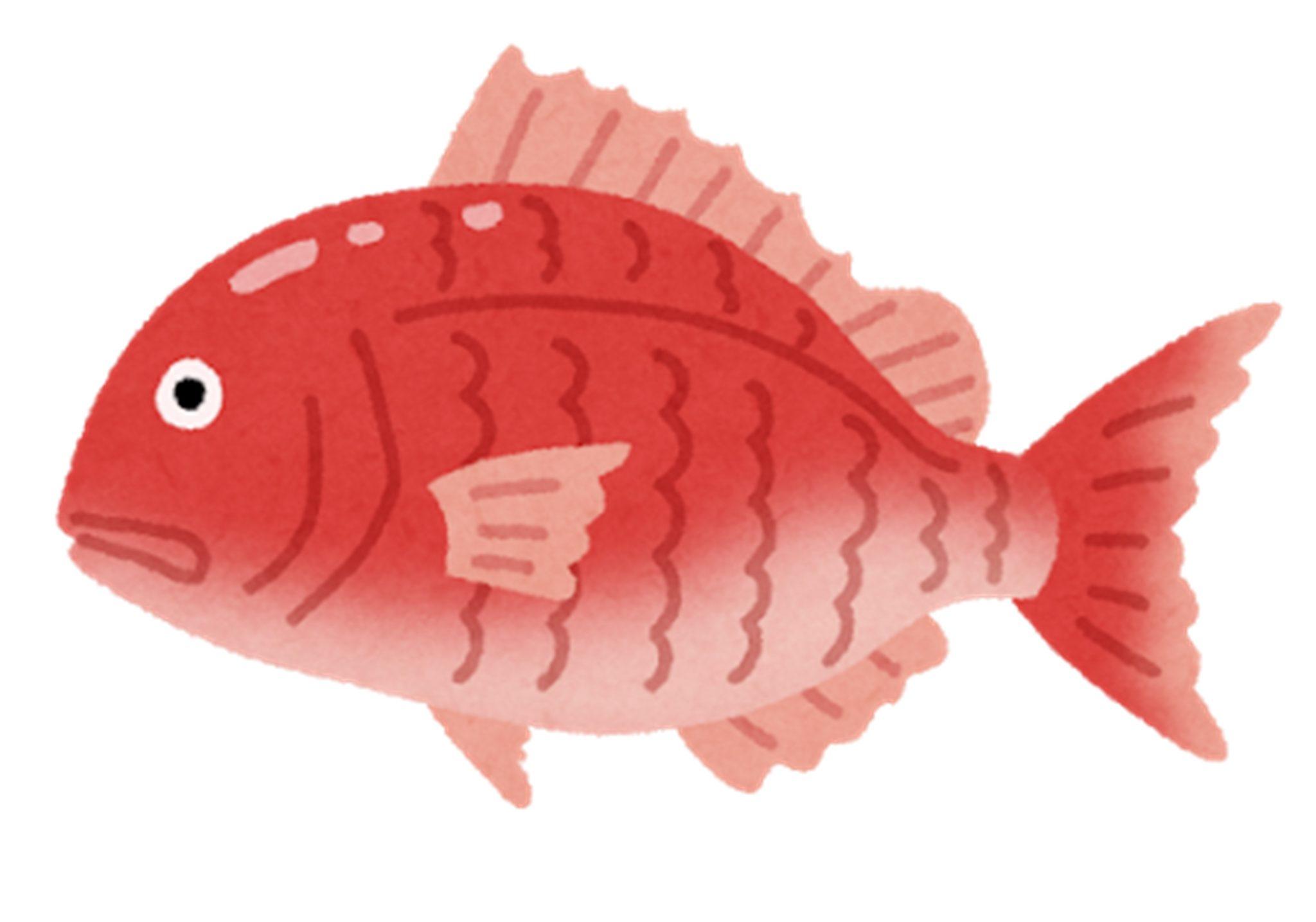 第5回 庄内浜魚まつり in 山形