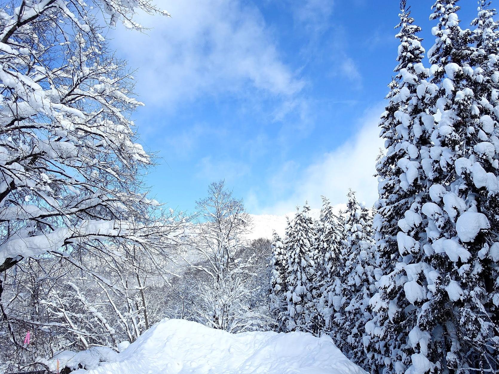 【まとめ】2020-2021年 山形県の年末年始イベント情報 12月26日(土)~1月3日(日)