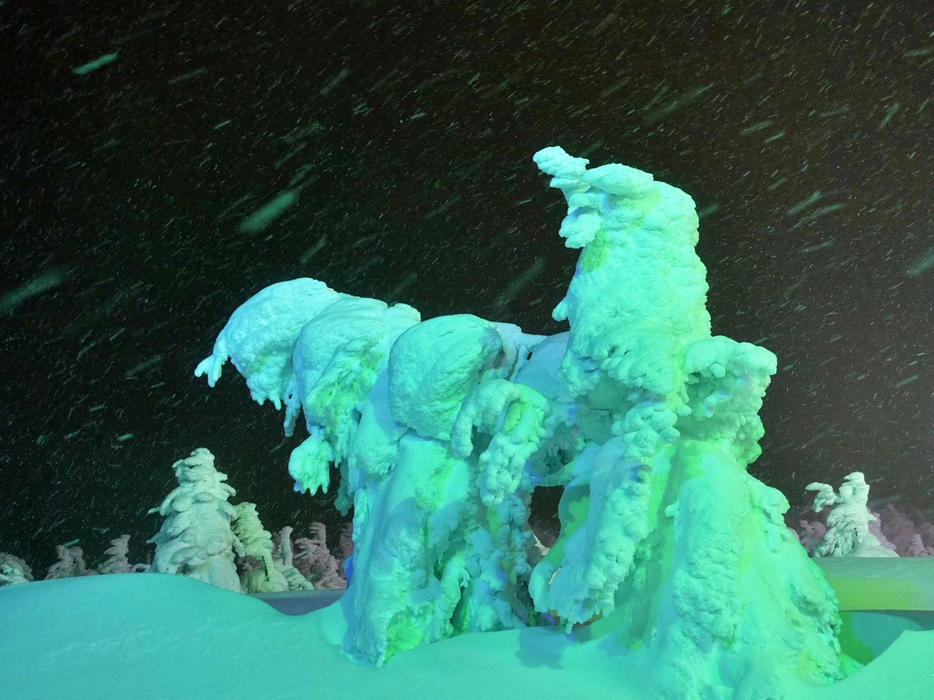【まとめ】2021年 山形県の週末イベント情報 1月23日(土)・1月24日(日)