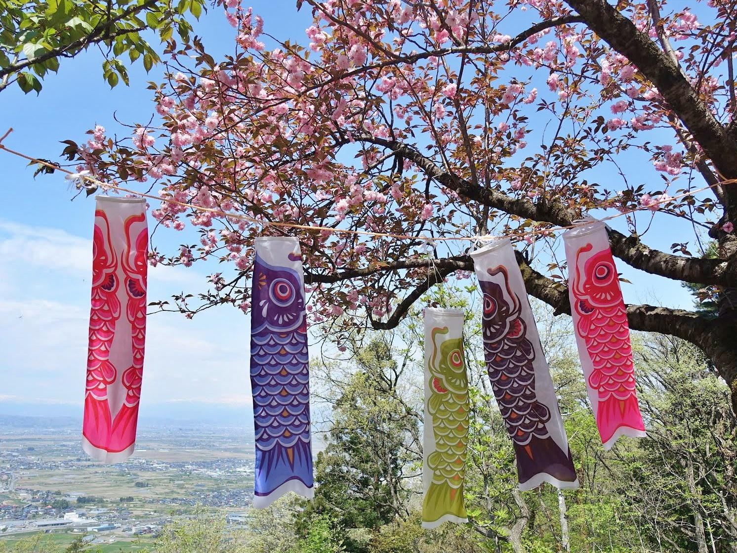 【まとめ】2021年 山形県のGWイベント情報 4月29日(木)~5月9日(日)