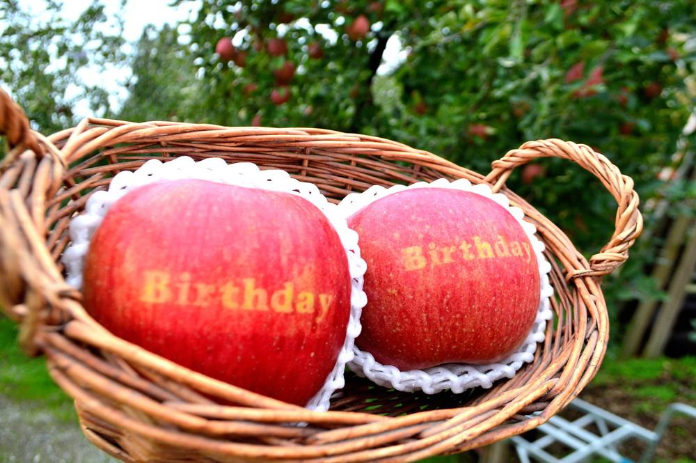 【プレミアム体験】名産地・朝日町和合平のりんごに好きなメッセージを入れる!自分だけのオリジナル文字入りりんごづくり体験🍎